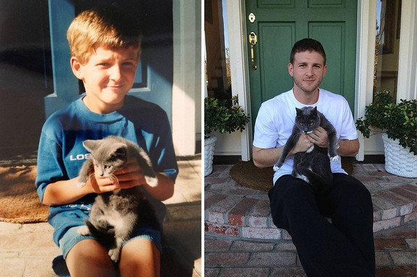 gatos antes y despues 8