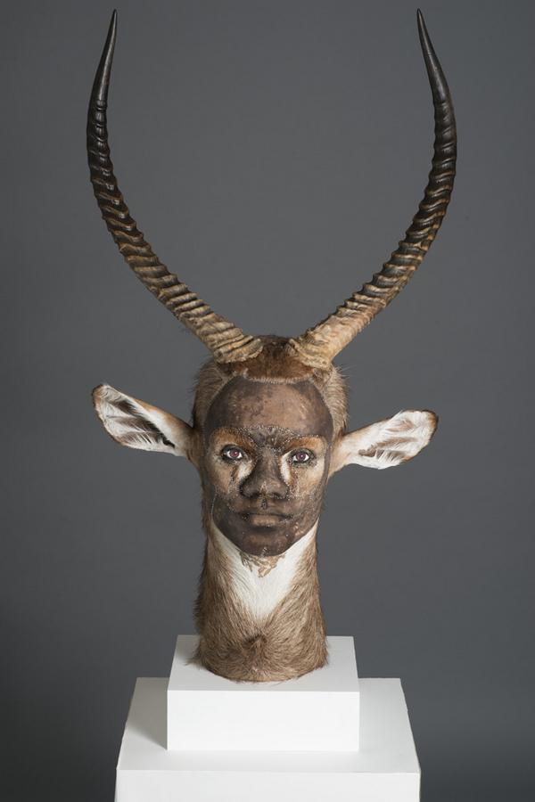 taxidermist2